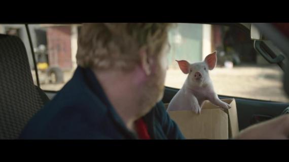 Watch: Postman Befriends Cute Pig In Adorable Ad